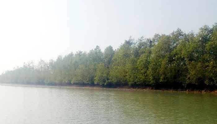 সম্ভাবনাময় পর্যটন কেন্দ্র কাঁঠালিয়ায় ছৈলার চর